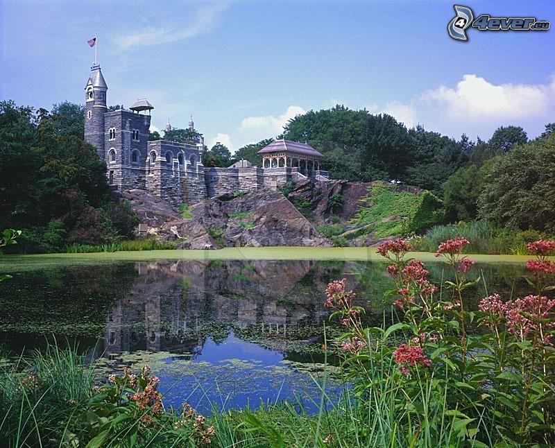 Belvedere kastély, tó, rózsaszín virágok