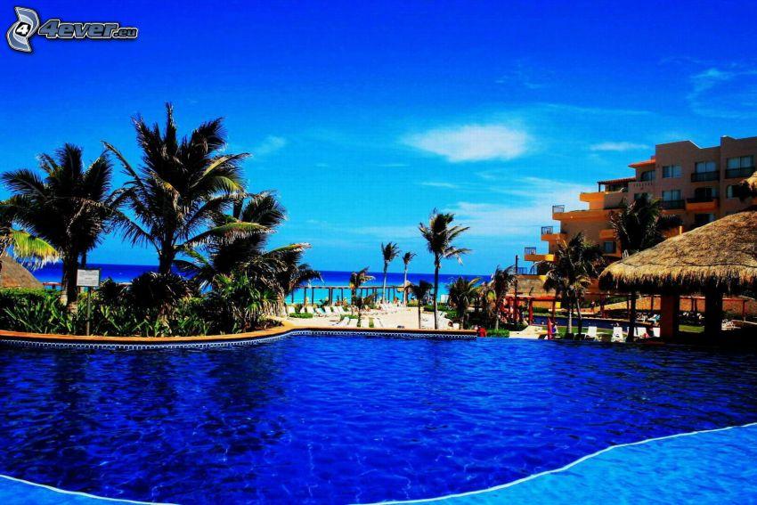 Cancún, medence, hotel, pálmafák, nyílt tenger