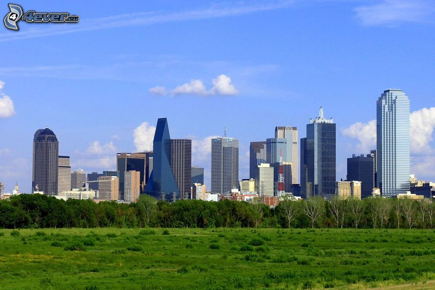 Dallas, felhőkarcolók, erdő, park