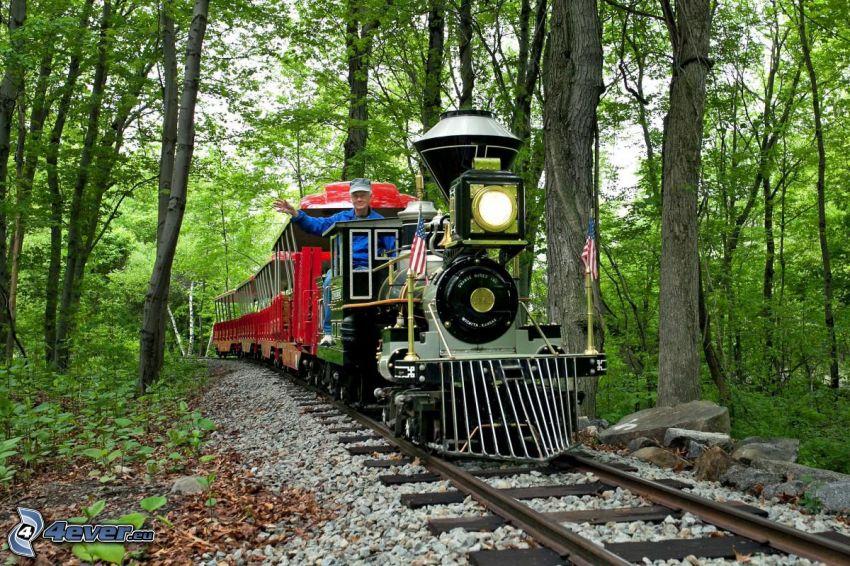 vonat, mozdony, erdő