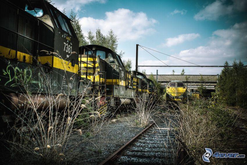 vonatok, sínek, száraz fű, HDR