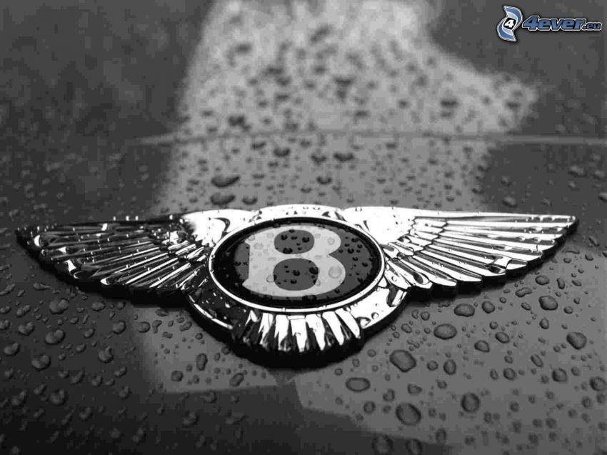 Bentley, vízcseppek