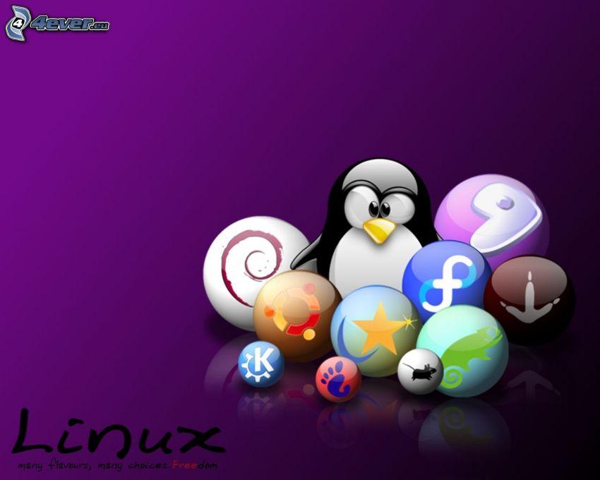 Linux, gömbök, lila háttér