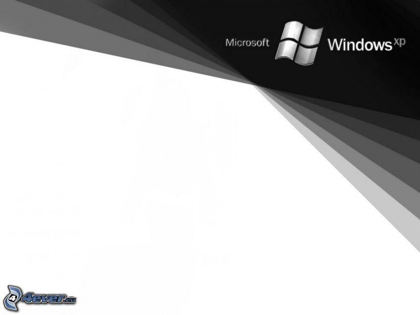 Microsoft Windows XP, logo