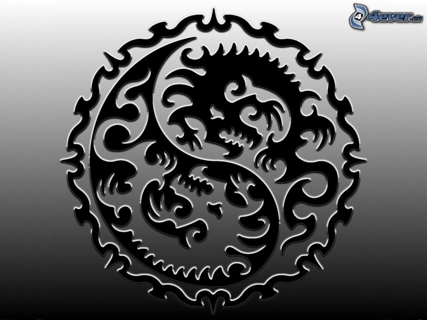 sárkány logó