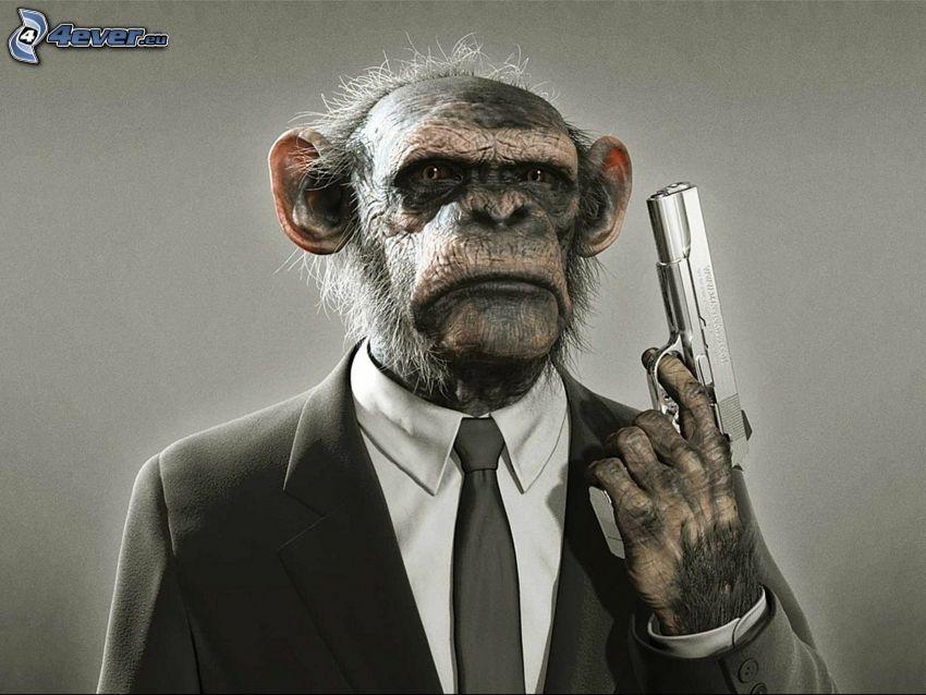 majom, pisztoly, öltöny