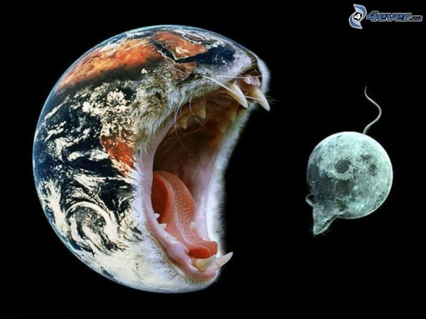 Föld és Hold, macska és egér