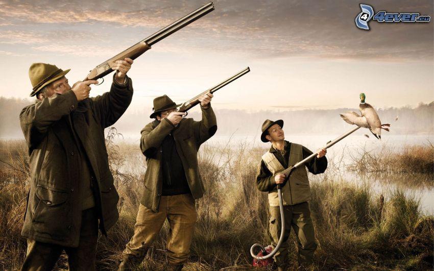 férfiak, puskák, porszívó, kacsa, vadászat