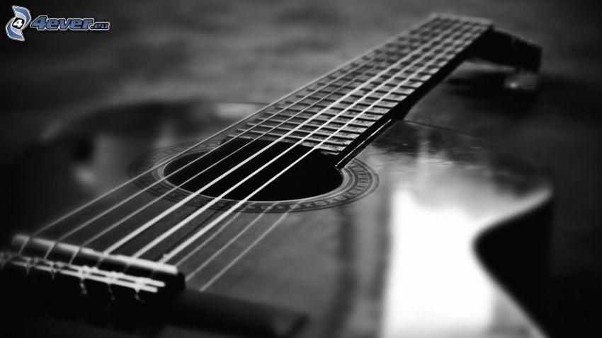 gitár, húrok, fekete-fehér kép