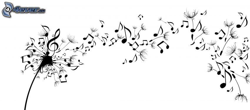 gyermekláncfű, hangjegyek, g-kulcs, fekete-fehér