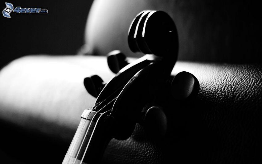 hegedű, fekete-fehér kép