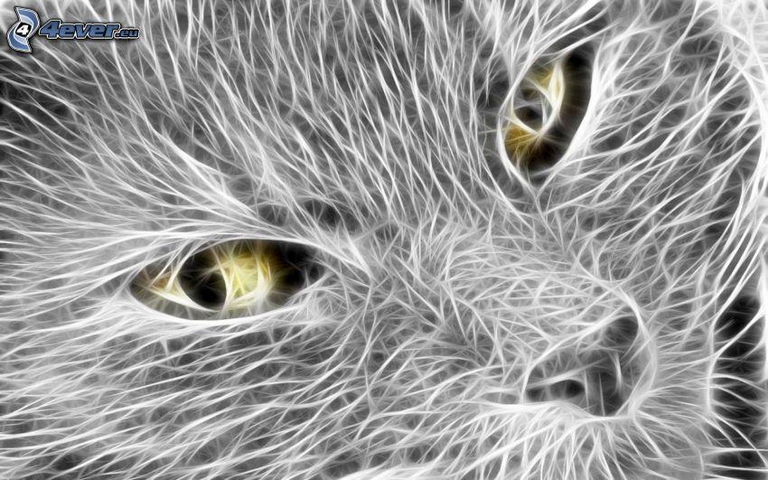 macska arc, szemek, fehér vonalak
