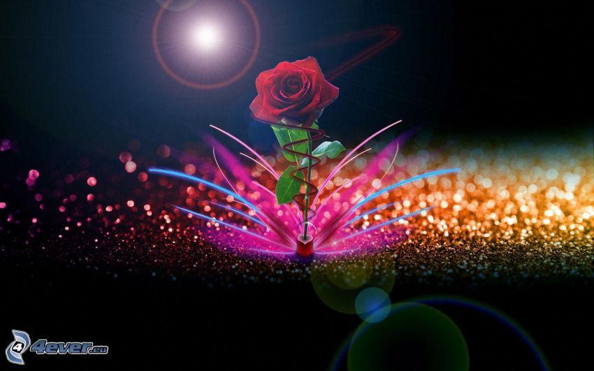vörös rózsa, színes körök, színes csíkok