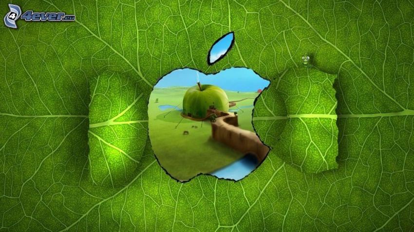 levél, ablak, Apple, alma