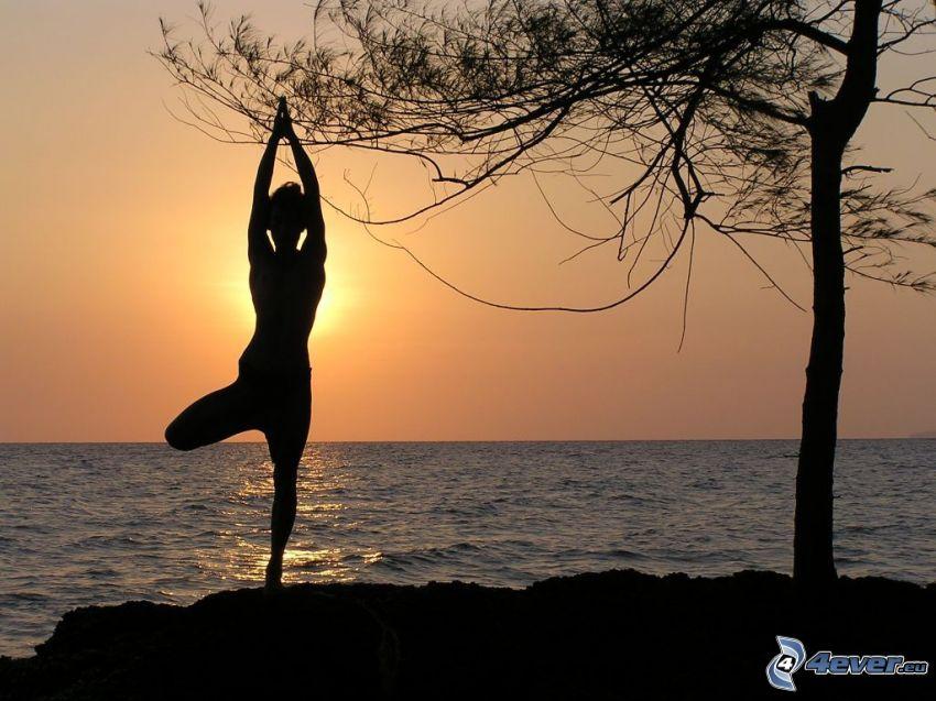 nő sziluettje, jóga, naplemente a tenger fölött, fa sziluettje