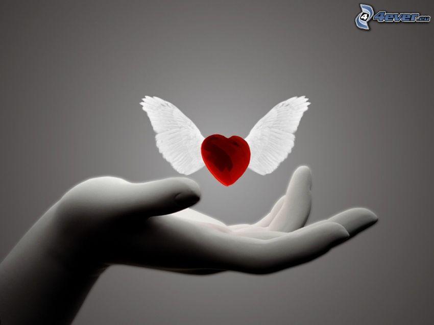 szív szárnyakkal