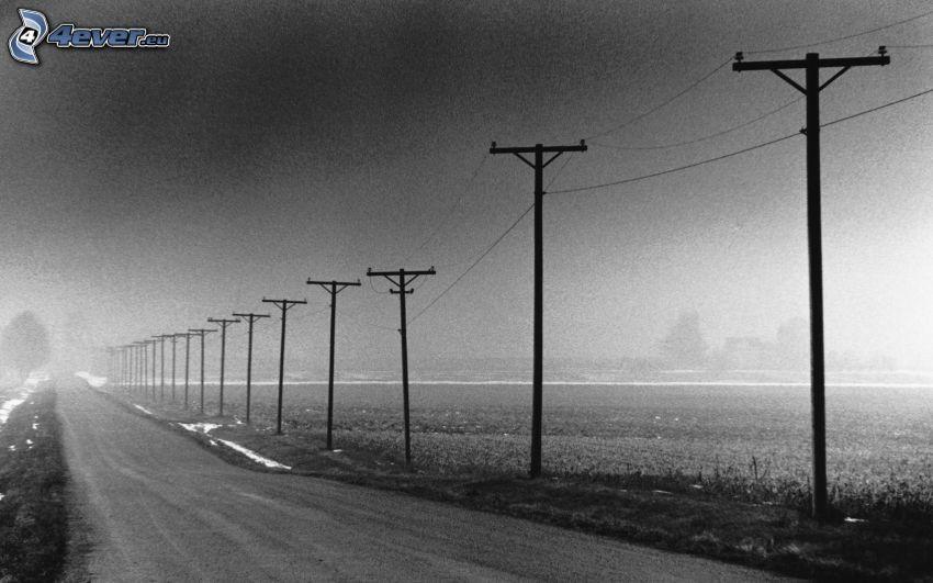 elektromos vezetékek, út, fekete-fehér kép