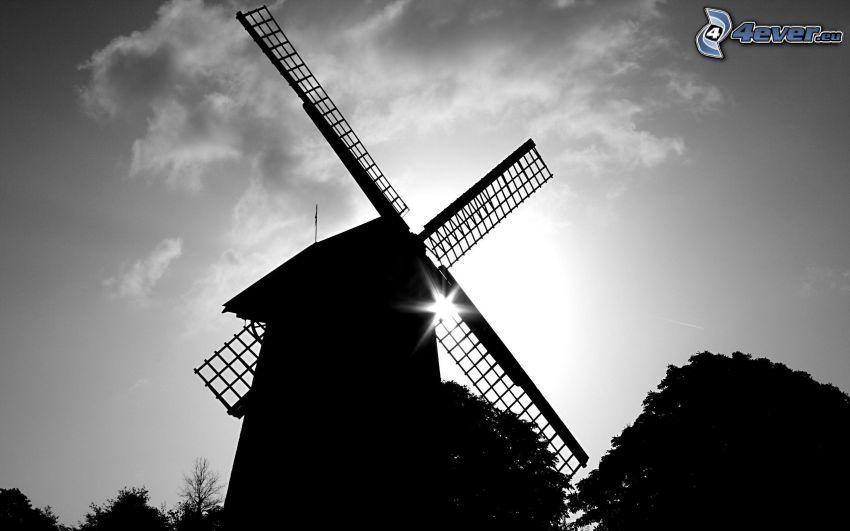 szélmalom, sziluett, nap, fekete-fehér kép
