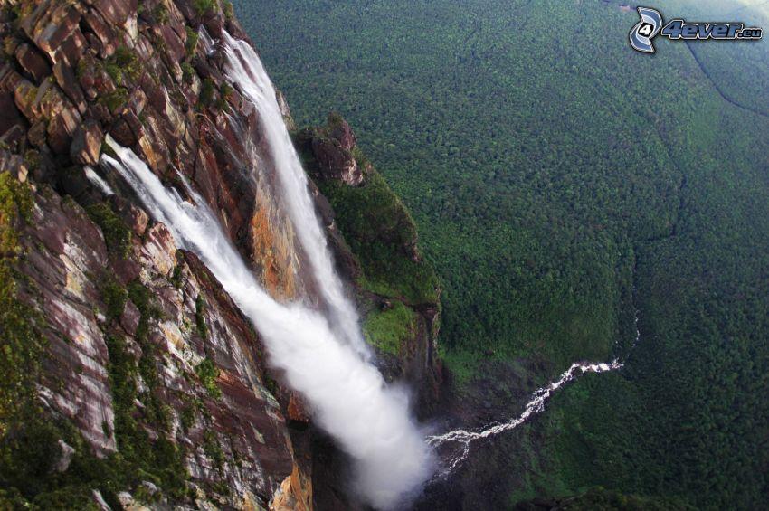 Angel-vízesés, kliff, erdő, Venezuela
