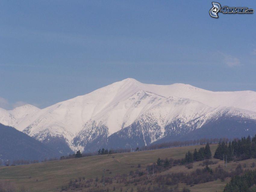 havas domb, természet