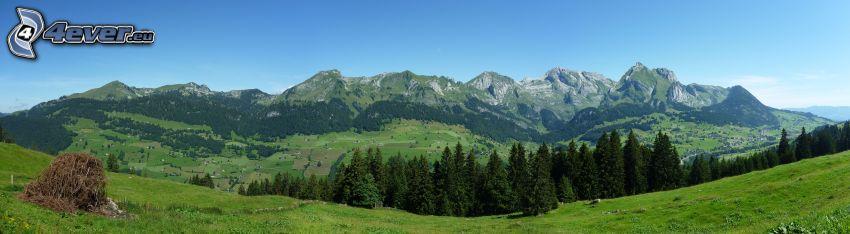 hegyvonulat, erdők és rétek, panoráma