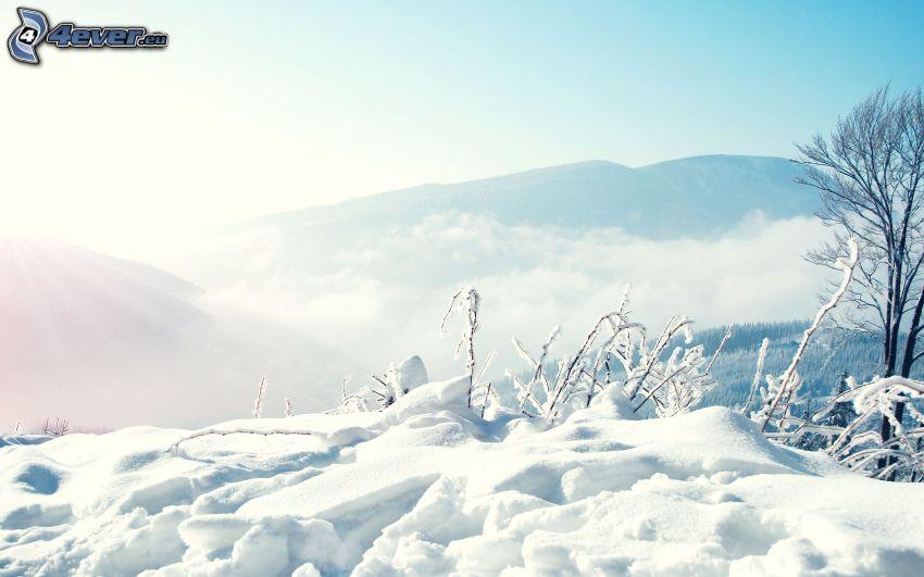 hó, hegyek, nap
