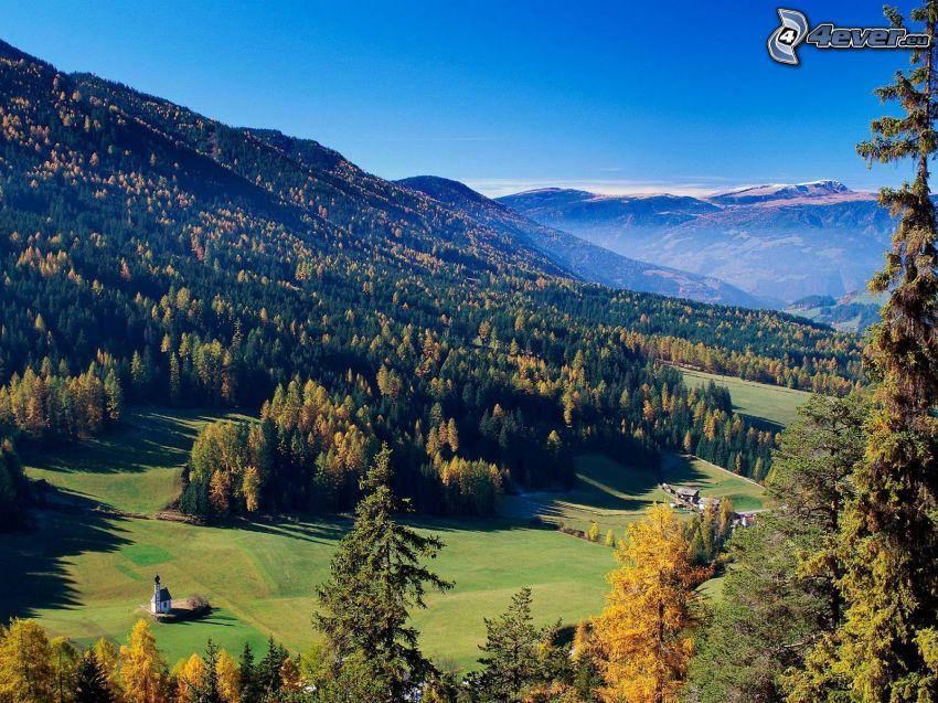 Val di Funes, templom, tűlevelű erdő, rétek, Olaszország