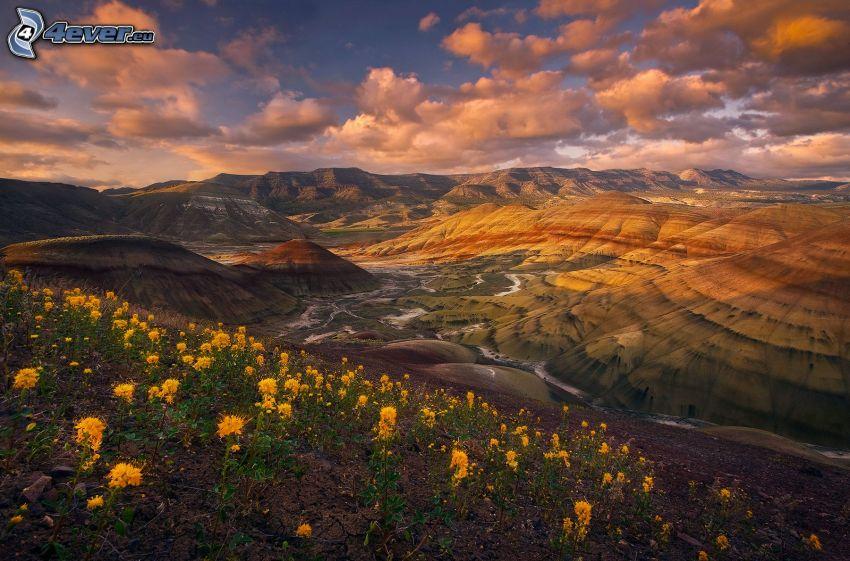 Painted Hills, sárga virágok, felhők, Oregon, USA