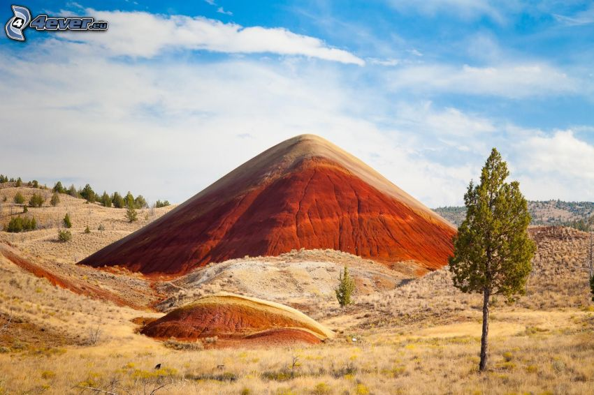 Painted Hills, zöld fák, Oregon, USA