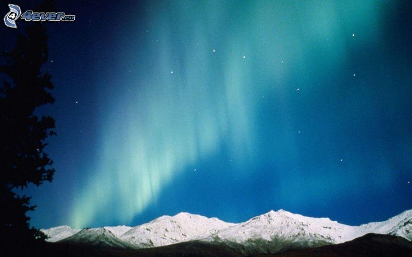 sarki fény, havas hegységek, éjszaka, fa sziluettje