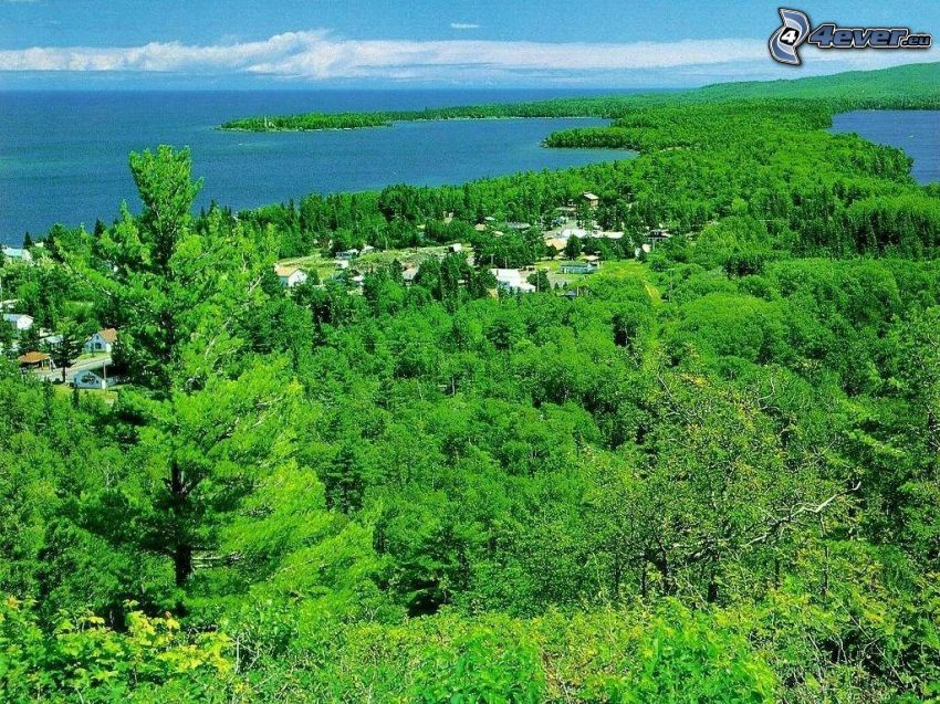 Copper Harbor, Michigan, tűlevelű erdő, tengerpart, falu