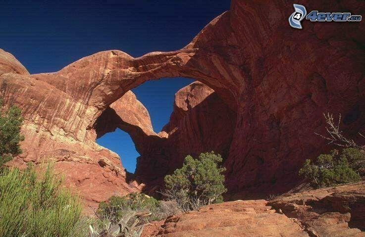 Double Arch, természetes híd, bokrok