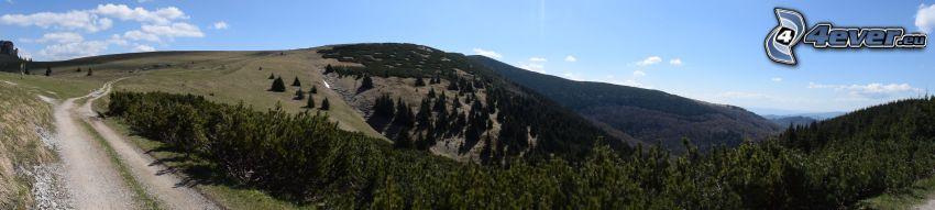 hegyvonulat, völgy, mezei út, panoráma