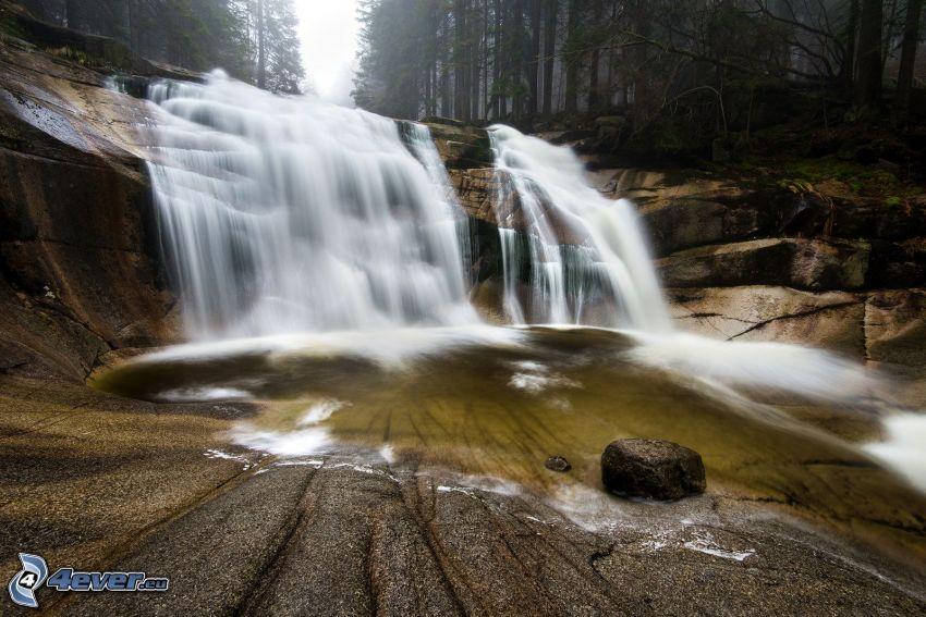 Mumlava vízesés, erdő