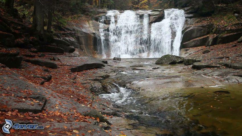 Mumlava vízesés, folyó, őszi levelek
