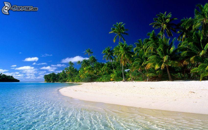 Cook Island, Tahiti, azúrkék tenger, strand, pálmafák a tengerparton