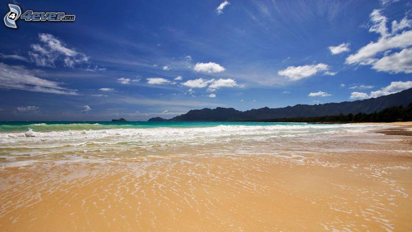 homokos tengerpart, tenger, ég, felhők