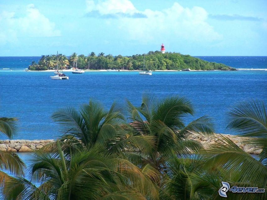 sziget, pálmafák, tenger