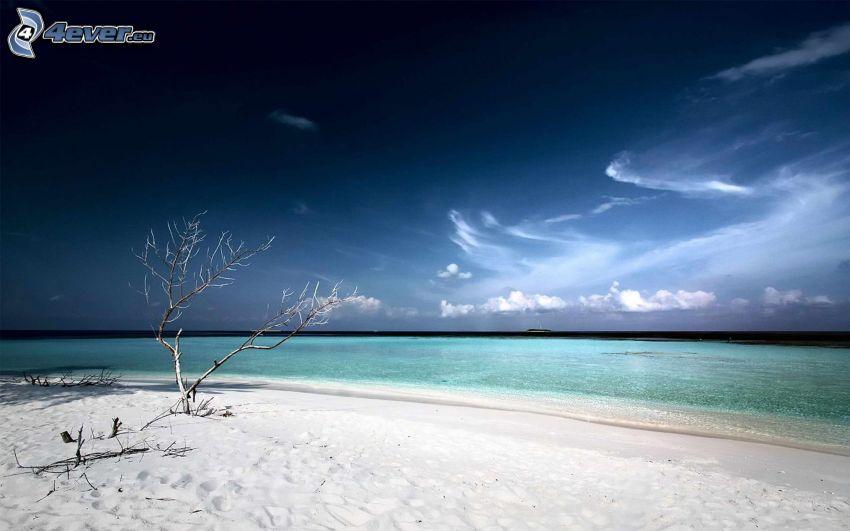 tenger, strand, ég