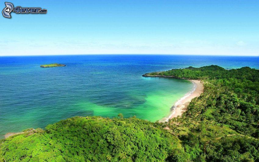 tenger, tengerpart, fák, sziget
