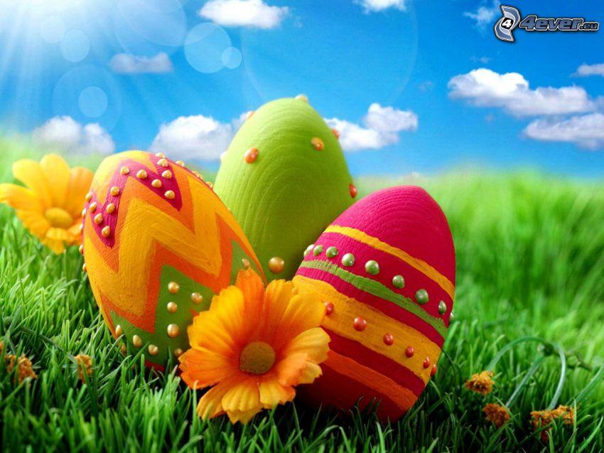 húsvéti tojások, fű, sárga virágok