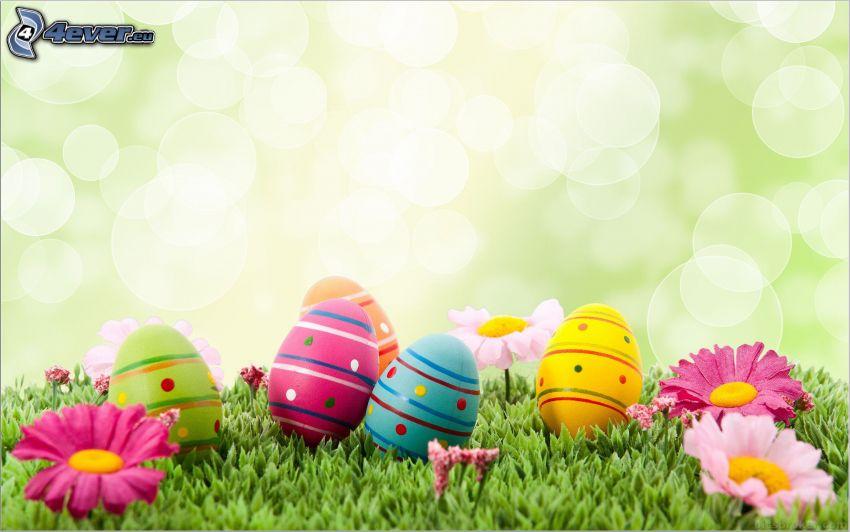 húsvéti tojások, rózsaszín virágok