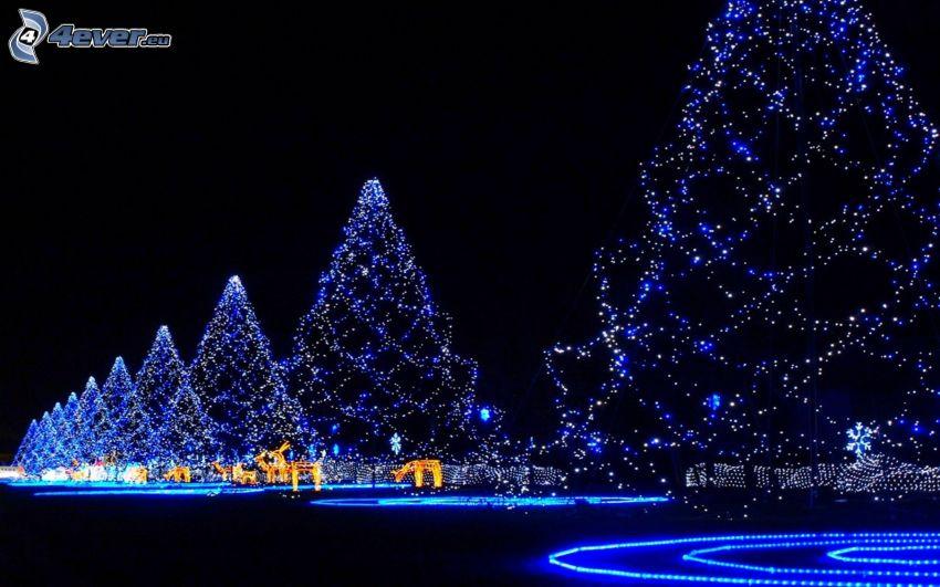 fák, karácsonyfa, éjszaka, rénszarvasok