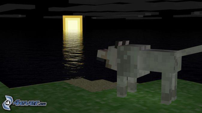 Minecraft zachód słońca wilk