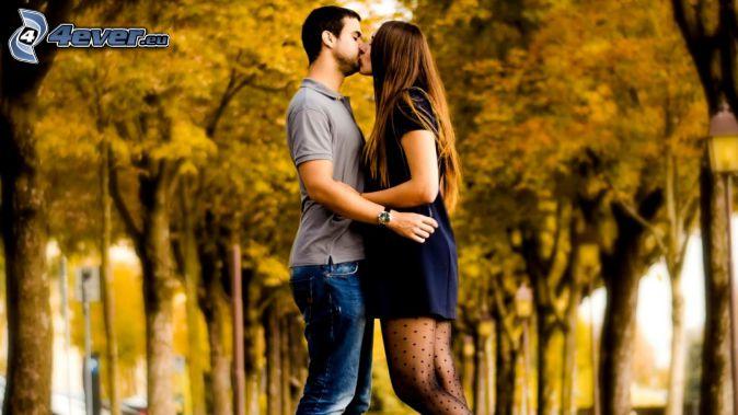 para, pocałunek, aleja drzew