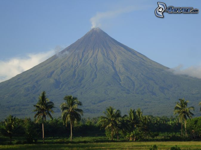 Mount Mayon, palmy, Filipiny