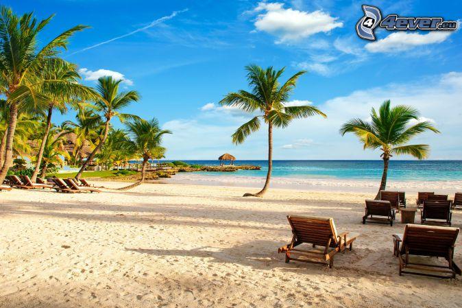 leżaki, plaża piaszczysta, palmy, morze otwarte