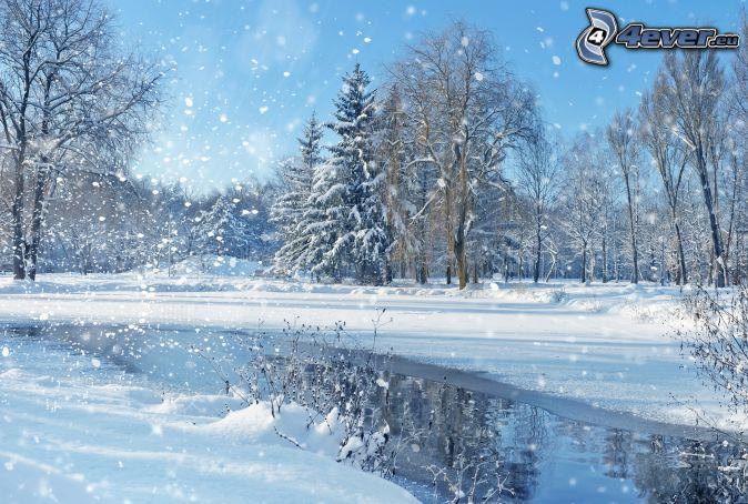 ośnieżone drzewa, rzeka, opady śniegu