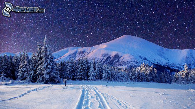 śnieżny krajobraz, zaśnieżony las, zaśnieżona góra, ślady w śniegu, gwiazdy