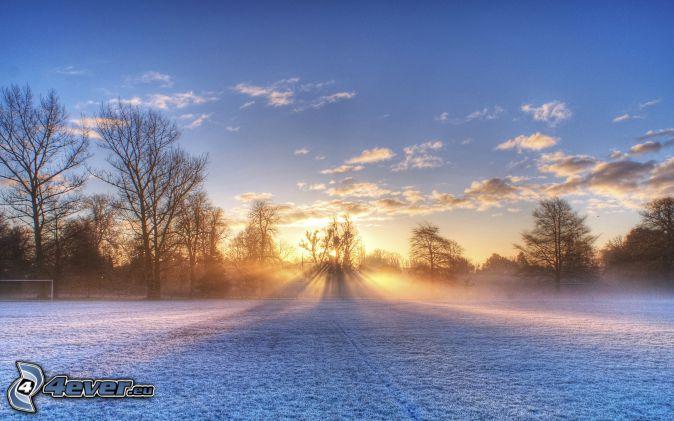 zachód słońca za drzewem, zaśnieżona łąka, promienie słoneczne, chmury